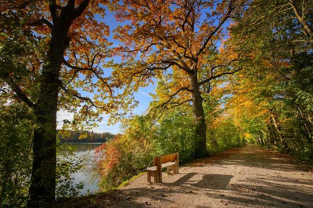 Wunderschön! Herbst in der südlichen Eifel – WDR Fernsehen, Sonntag, 3. Oktober 2021, 20.15 – 21.45 Uhr